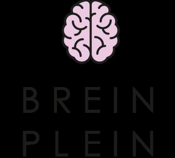 afbeelding van hersenen en tekst 'breinplein'