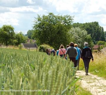 foto van wandelende mensen in een veld