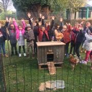 Kippen op bezoek