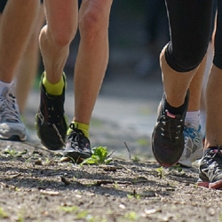 Dilbeek Loopt! Jogging '80