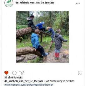 jongens klimmen op omgevallen boom