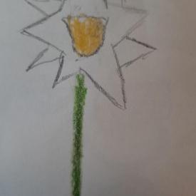 Schets bloem