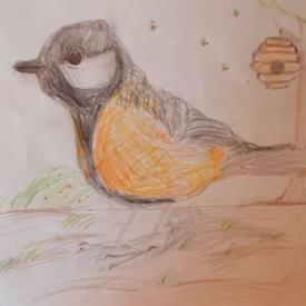 vogeltekening 4