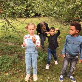 kinderen appel