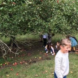kinderen onder fruitboom